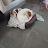 Lorand Kiss avatar image