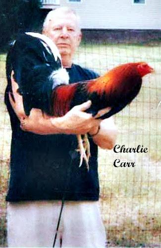 charlie carrdfgffd.jpg
