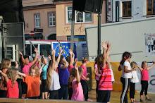 Stadtfest Herzogenburg 2014_ (10)