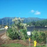 Hawaii Day 3 - 114_1044.JPG