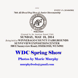 WDC 2014 Spring Show