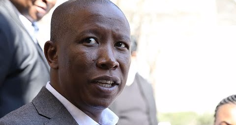 EFF leader Julius Malema accused Finance Minister Malusi Gigaba of being a central figure in the political saga. File photo.