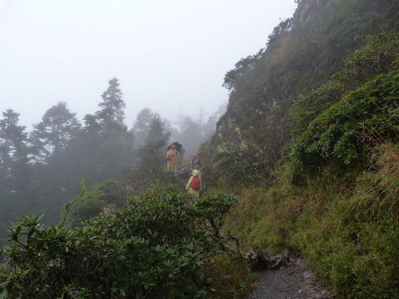 TAIWAN. Weekend Randonnée, Taipei à  Hehuanshan en passant par Puli, retour par les gorges de Taroko - P1280907.JPG