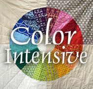 Color Intensive Online Workshop
