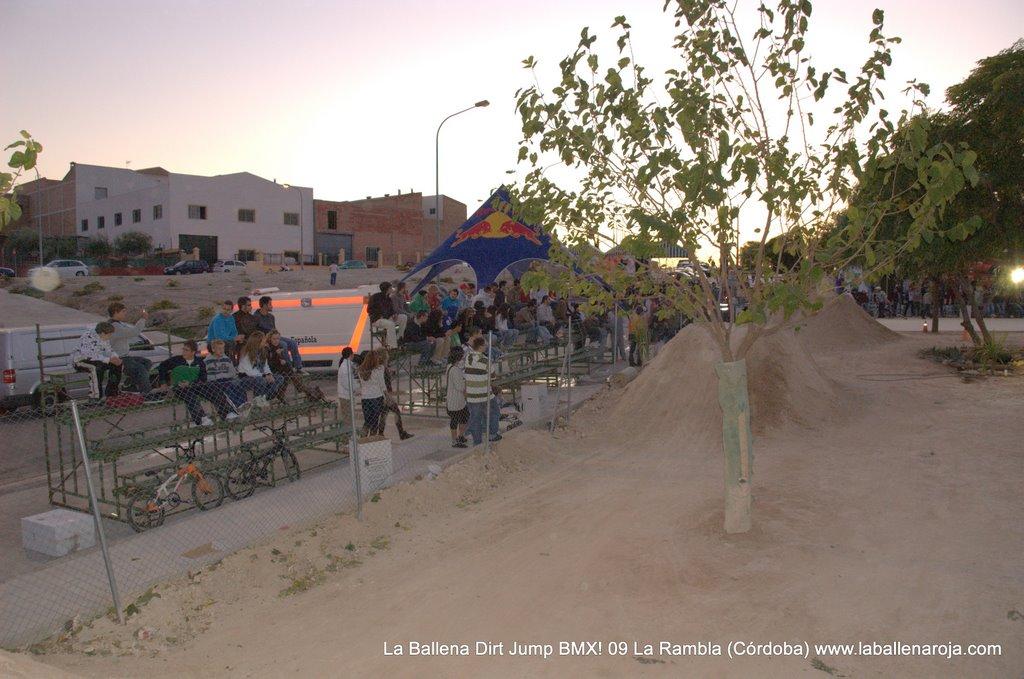 Ballena Dirt Jump BMX 2009 - BMX_09_0166.jpg
