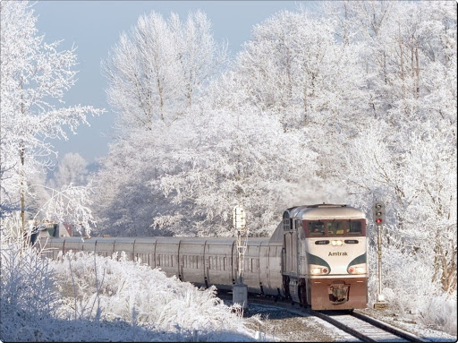 Photographic Train Trip in Winter (3).jpg