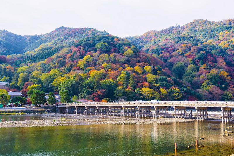 京都 渡月橋 紅葉 写真1