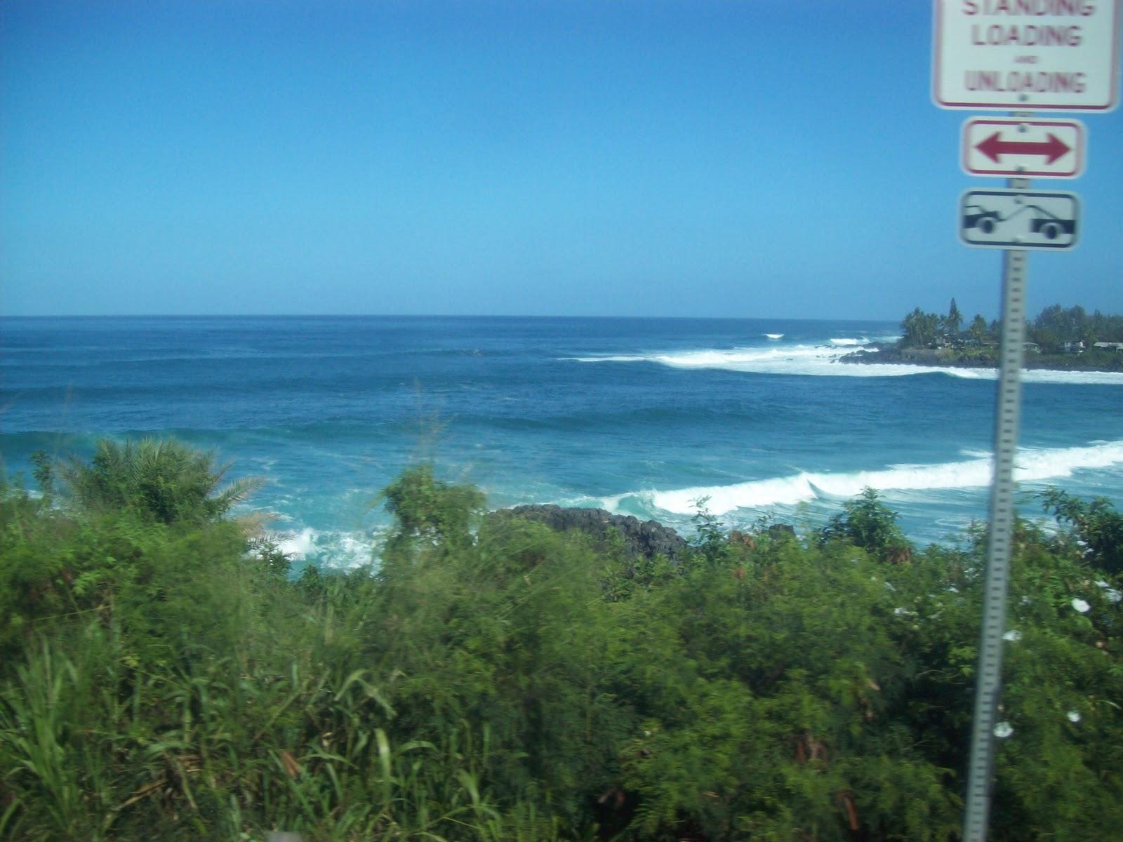 Hawaii Day 3 - 100_6992.JPG