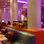 umami restaurant in The Hague in Den Haag, Zuid Holland, Netherlands