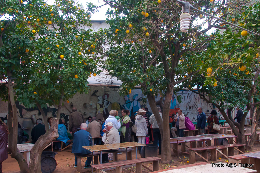 Мошав Мишмерет. Пчеловоды Гиди и Мири Маген. Экскурсия в Израиле, гид Светлана Фиалкова.