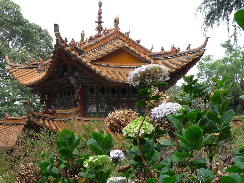 Chine .Yunnan . Lac au sud de Kunming ,Jinghong xishangbanna,+ grand jardin botanique, de Chine +j - Picture1%2B386.jpg