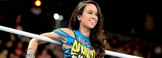 AJ lee the richest wwe diva