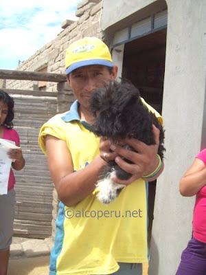 huacho2010 (38)