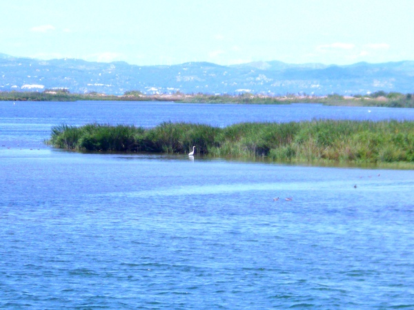 Дельта реки Эбро