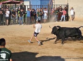 113-peña taurina linares 2014 472.JPG