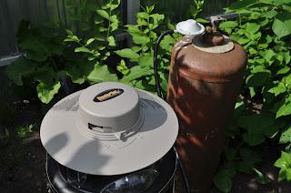 Комары на даче, способы борьбы и защиты от комаров