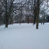 'Stadtpark'