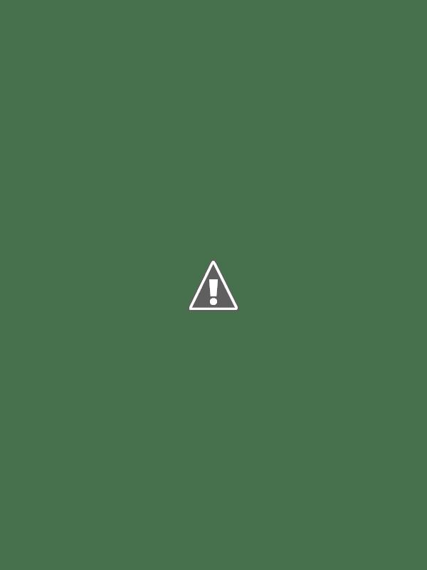 Camos rusos (en imágenes) 0_630bc_4ff7b206_XL