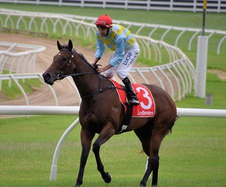 race 5_booker 2