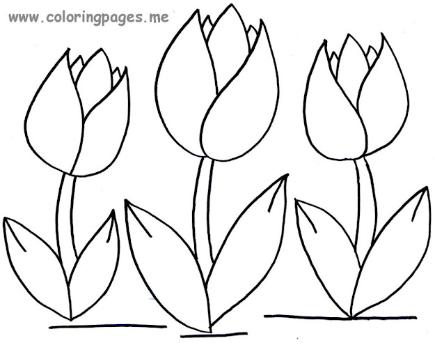 Tulip Coloring Pages Print Color Craft In Tulip Coloring Pages