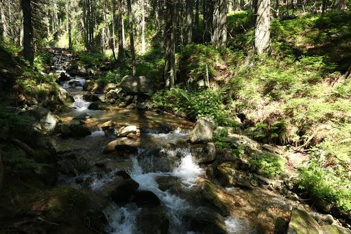 Bobrovecká dolina