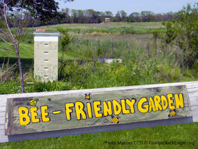 Thanks to Nile and  Susan for visiting with us about honey bees and their garden ethics.