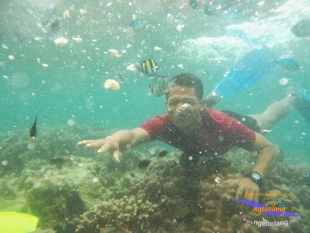 pulau harapan timur jauh 29-30 nov 2014 caklung 21