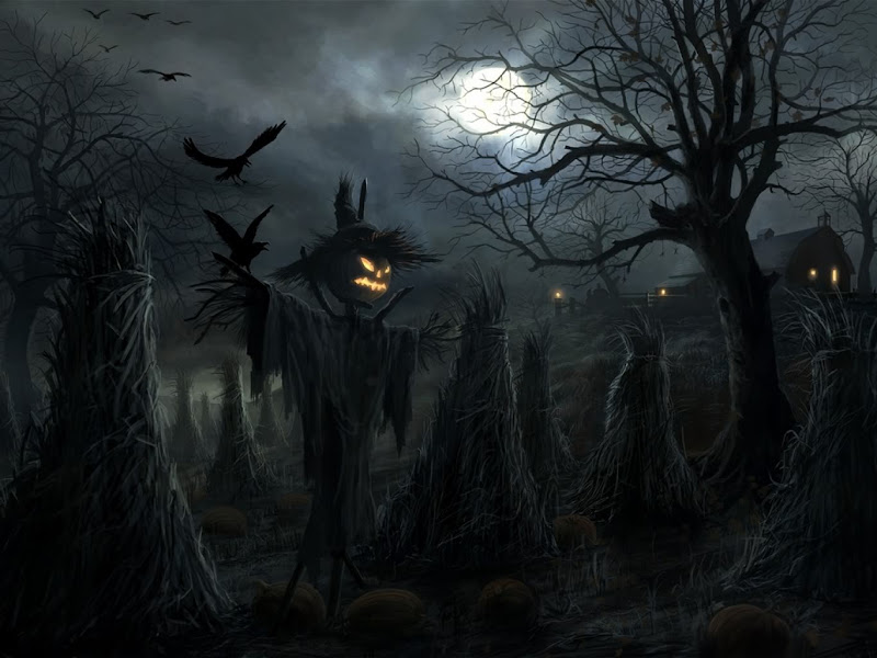 Helloween Field Of Pumpkins, Halloween