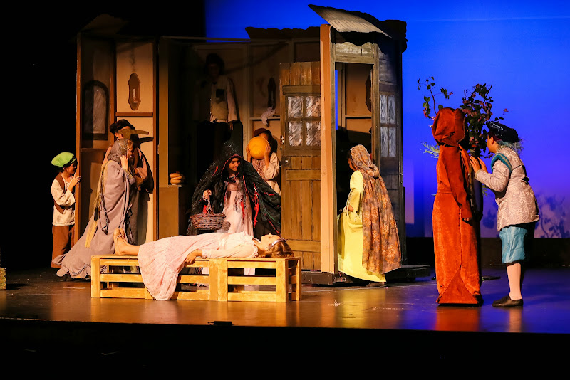 2014Snow White - 88-2014%2BShowstoppers%2BSnow%2BWhite-6311.jpg