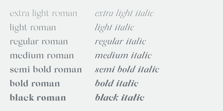 Download Silk Serif Font Family From SilkType