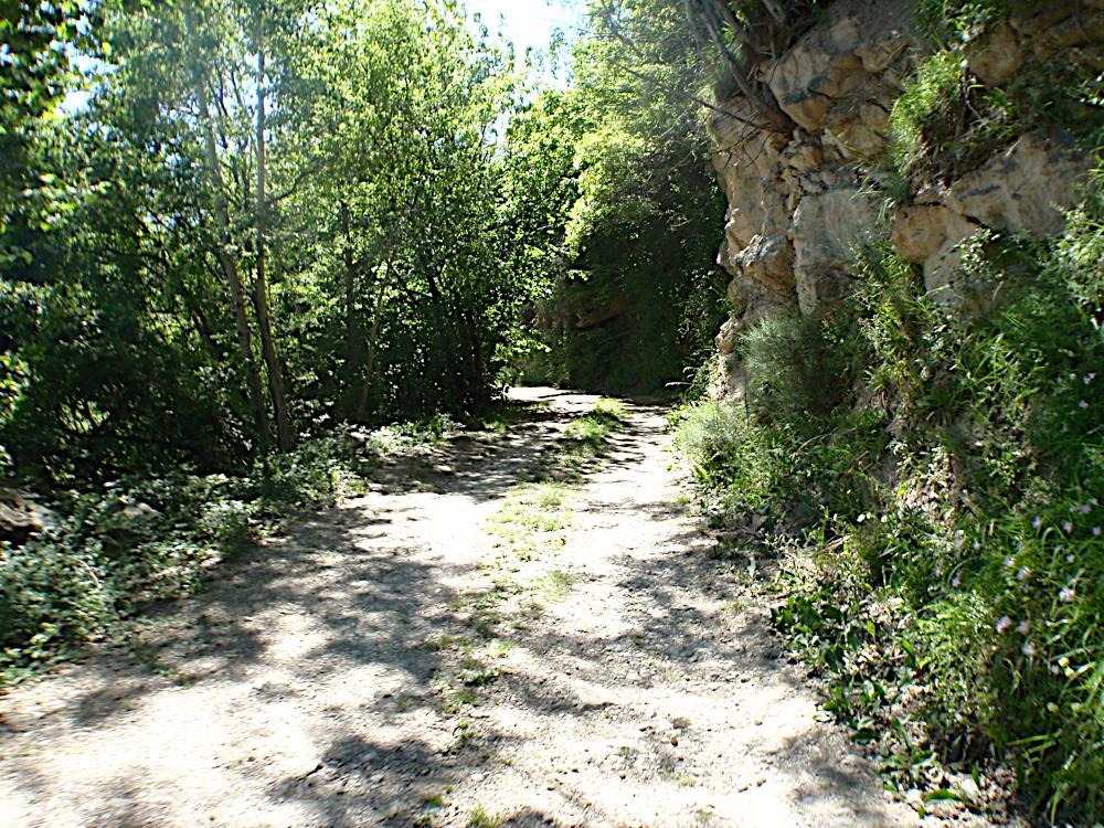 Campaments dEstiu 2010 a la Mola dAmunt - campamentsestiu101.jpg