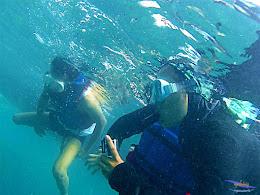 pulau harapan, 6-7 juni 2015 gopro 012
