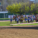 CROSDEGRANOLLERS_2014