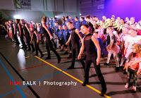 Han Balk Voorster Dansdag 2016-3586.jpg