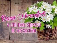 buon mercoledi immagine con frase aforismo a chi non spreca le occasioni cesto fiori bianchi.jpg