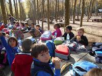 http://www.gitanjali.cat/l-aprenentatge/arbres-infantil-p5