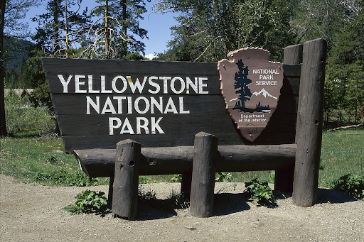 Yellowstone Park Ranger attack could cost man up to 34 years behind bars