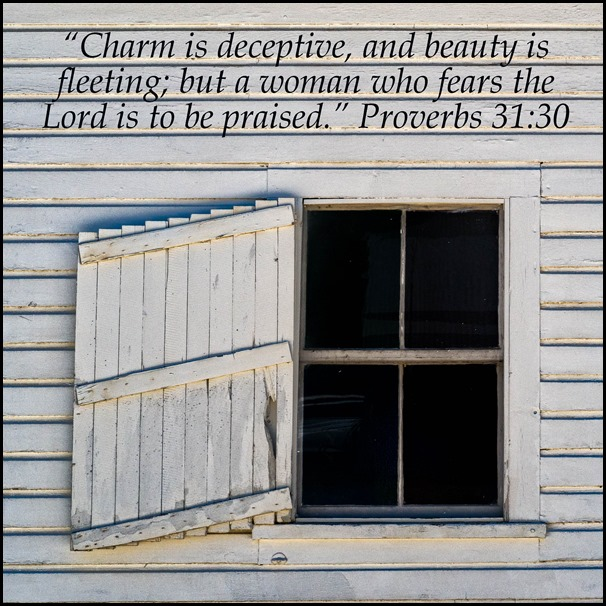 Scripture and a Snapshot 2018 Week 6.  Proverbs 31:30