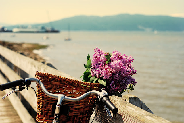 Cycling along the bay with flowers from the farmer's market.  / Credit: Kerstin Martin