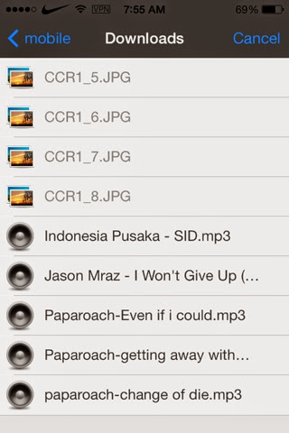safari downloader+ manager