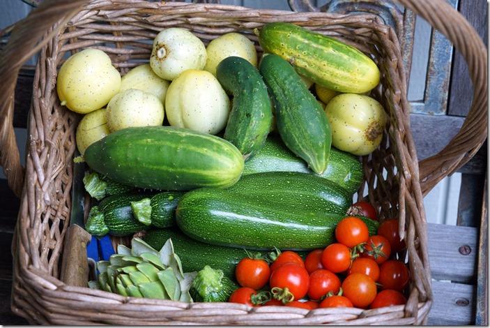 lopez harvest 082518 00000