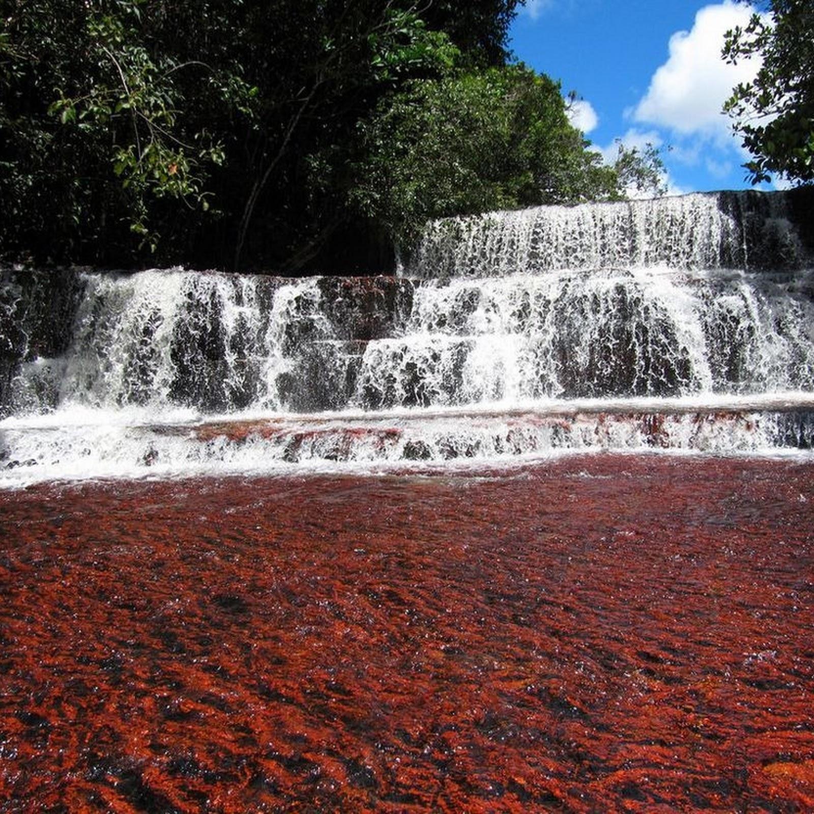 Jasper Creek, Venezuela