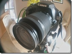 Canon with zoom lens
