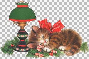 RiRi-nappingchristmaskitten.jpg