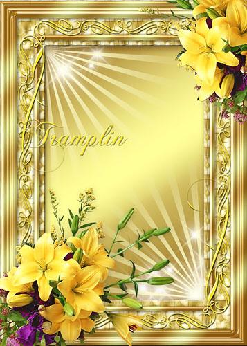 Рамка для Photoshop с лилиями – Солнечный зайчик