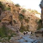 Jordan ירדן 2011