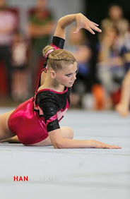 Han Balk Fantastic Gymnastics 2015-1778.jpg