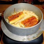 delicious unagi on rice at Miyabitei Izo in Roppongi, Tokyo, Japan