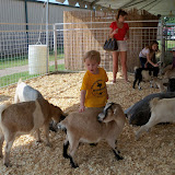 Fort Bend County Fair 2015 - 100_0203.JPG