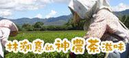 【綠農的家雲端市集】